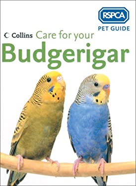 Care for Your Budgerigar