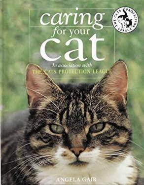 Cat care course uk