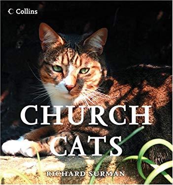 Church Cats
