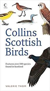 Collins Scottish Birds