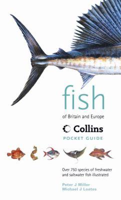 Fish of Britain & Europe
