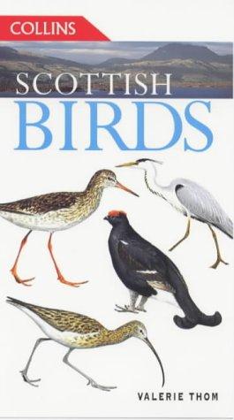 Scottish Birds