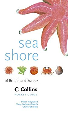 Sea Shore of Britain and Northern Europe