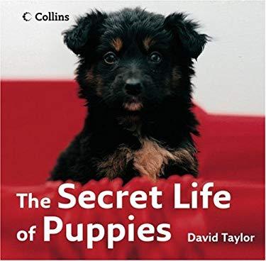 The Secret Life of Puppies
