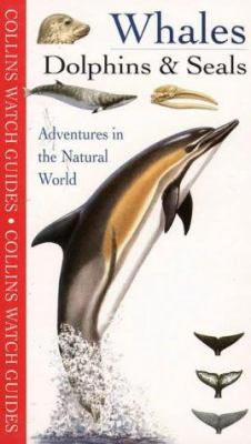 Whales, Dolphins & Seals