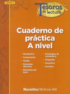 Tesoros de Lectura, a Spanish Reading/Language Arts Program, Grade 3, Practice Book, Pupil Edition