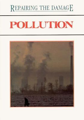Pollution: Repairing the Damage