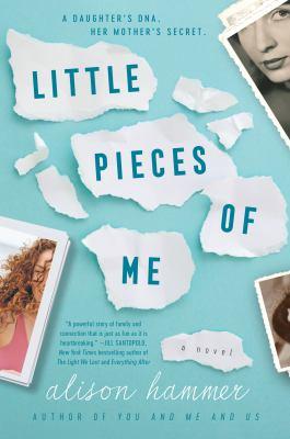 Little Pieces of Me: A Novel