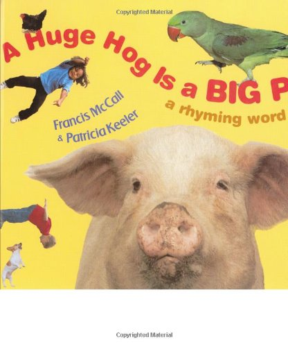 A Huge Hog Is a Big Pig: A Rhyming Word Game