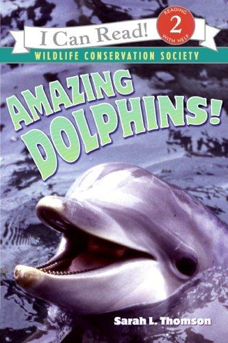 Amazing Dolphins!: