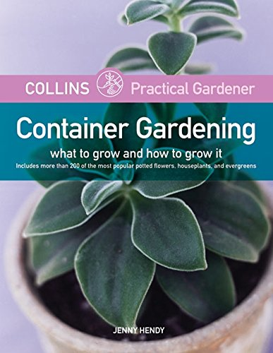 Container Gardening: What to Grow and How to Grow It