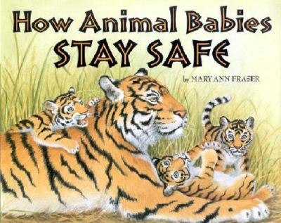 How Animal Babes Stay Safe