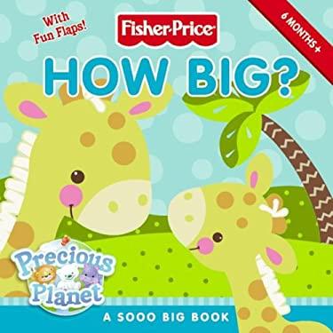 How Big?: A Sooo Big Book