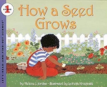 How a Seed Grows