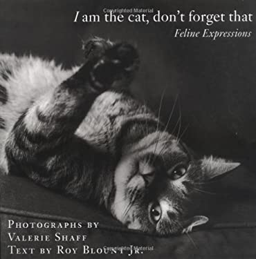 I Am the Cat, Don't Forget That: Feline Expressions