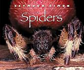 Spiders 167648