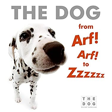 The Dog from Arf! Arf! to Zzzzzz Board Book