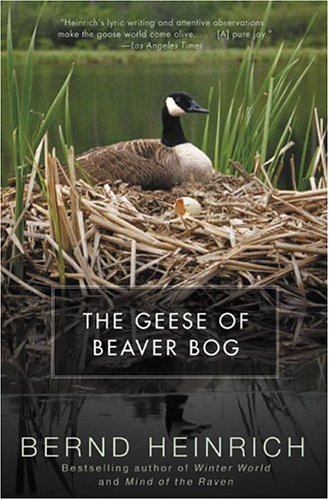The Geese of Beaver Bog 9780060957384