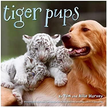 Tiger Pups