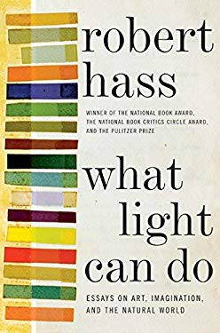 What Light Can Do: Essays on Art, Imagination, and the Natural World 9780061923920