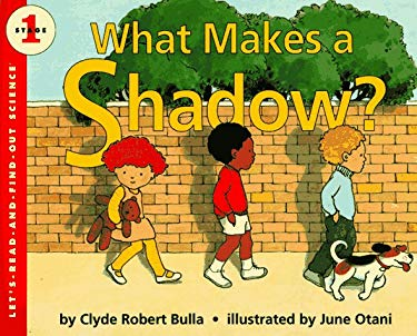 What Makes a Shadow?
