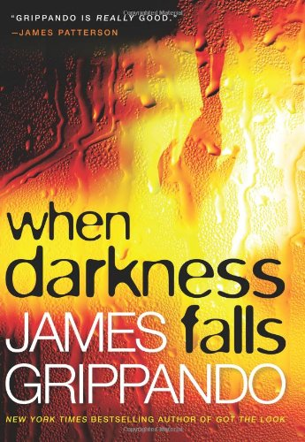 When Darkness Falls 9780060831134