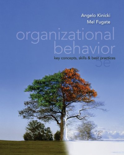 Organizational Behavior: Key Concepts, Skills & Best Practices - 5th Edition