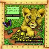 African Savanna 244971