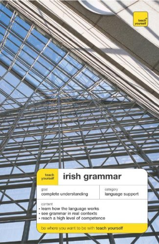 Irish Grammar 9780071463690