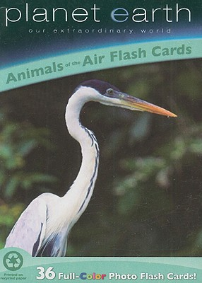 Animals of the Air Flash Cards