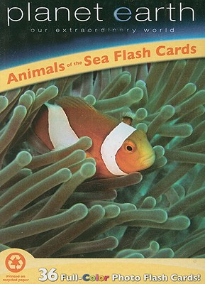 Animals of the Sea Flash Cards