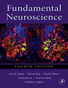 Fundamental Neuroscience 9780123858702