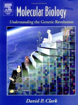 free theory and history an interpretation of