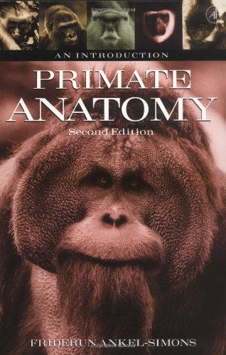 Primate Anatomy: An Introduction 9780120586707