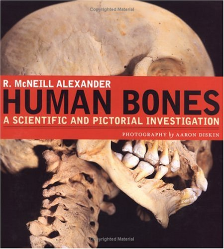 Human Bones: A Scientific and Pictorial Investigation 9780131479401