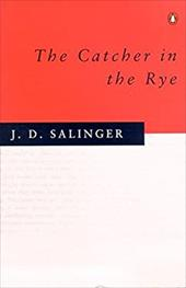 a summary of conflicts in the catcher in the rye by j d salinger He wants to be the catcher in the rye and save children from losing their  who is the real catcher in the rye in jd salinger's 'the catcher in the.