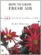 How to Grow Fresh Air: 50 House Plants That Purify Your Home or Office 422124