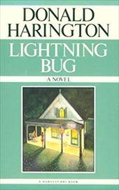 Lightning Bug 491638
