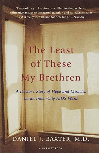 The Least of These My Brethren: A Doctor's Story of Hope and Miracles in an Inner-City AIDS Ward 9780156005883