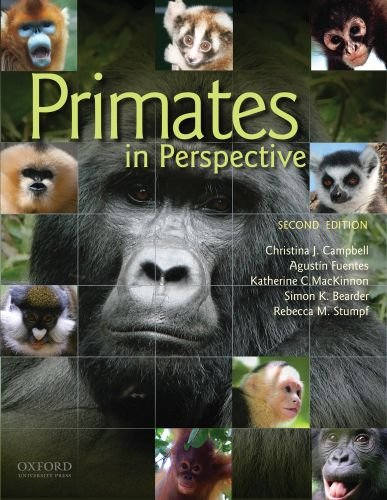 Primates in Perspective 9780195390438