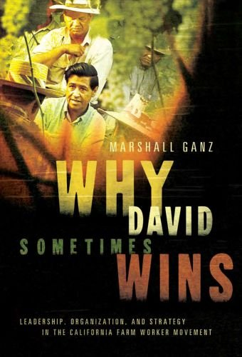 Why David Sometimes Wins: Leadership, Organization, and Strategy in the California Farm Worker Movement 9780199757855