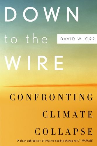 Down to the Wire: Confronting Climate Collapse 9780199829361