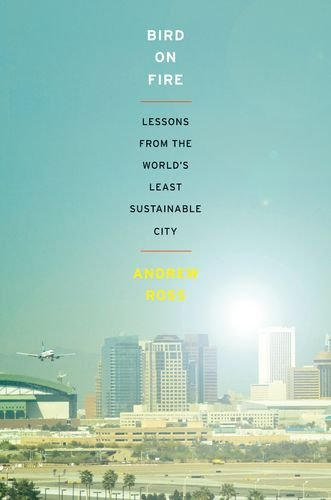 Bird on Fire: Lessons from the World's Least Sustainable City 9780199828265