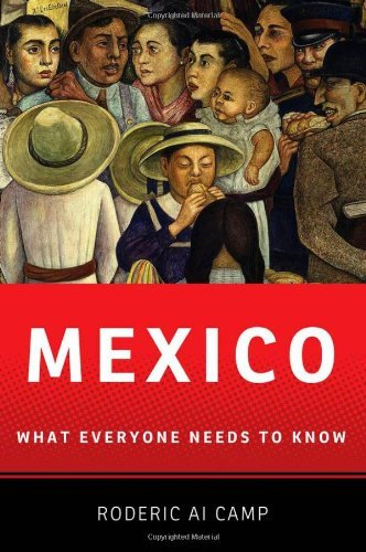 Mexico: What Everyone Needs to Know 9780199773879