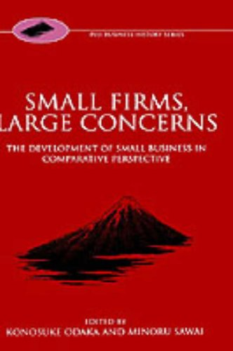 Small Firms, Large Concerns 'The Development of Small Business in Comparative Perspective'