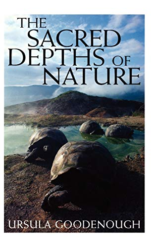 The Sacred Depths of Nature 9780195136296