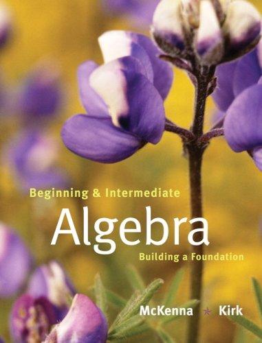 Beginning and Intermediate Algebra: Building a Foundation 9780201787375