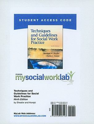 Techniques and Guidelines for Social Work Practice 9780205003143