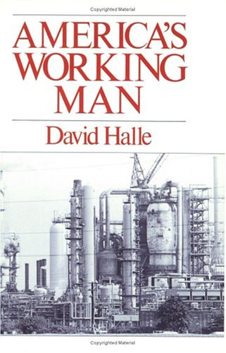 America's Working Man: Work, Home, and Politics Among Blue Collar Property Owners 9780226313665
