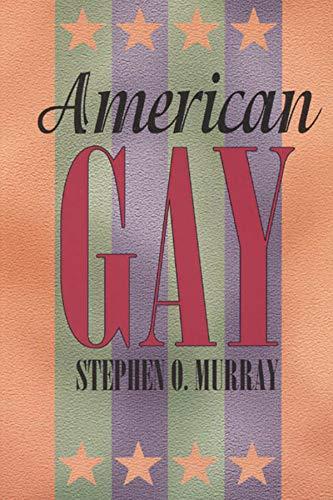 American Gay 9780226551937